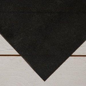 Геотекстиль термоскреплённый, 1,6 ? 5 м, плотность 100 г/м?, чёрный