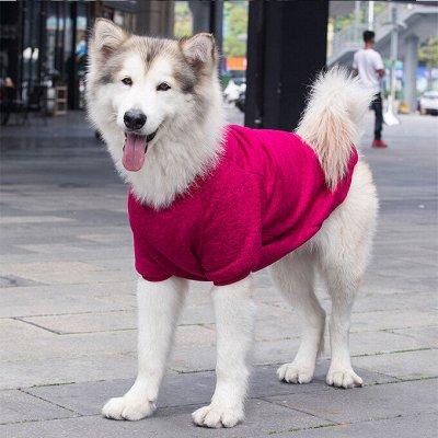 😺 Ушки, лапки, хвостики. Популярная закупка для любимцев — Комбинезоны для крупных пород собак