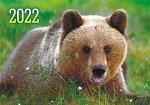 """Карманный календарь на 2022 год """"Дикие животные"""""""