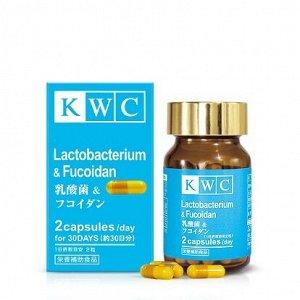 KWC Лактобактерии с фукоиданом, капс. фл. №60