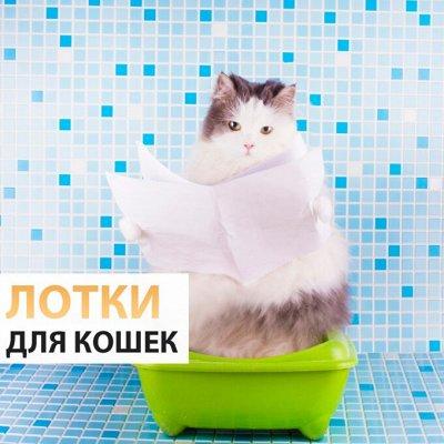 ♚Elite Home♚ Pasabahce💯 Ликвидация — Туалет-лотки — Для животных