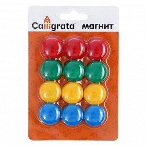 Магниты для доски, d-2 см, набор 12 шт., на блистере, МИКС, Calligrata