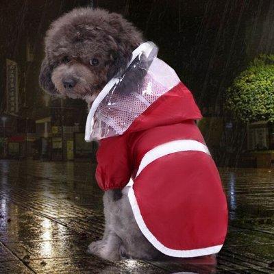 ☔ Всё что нужно каждый день! Зонт самурая в продаже — Для животных