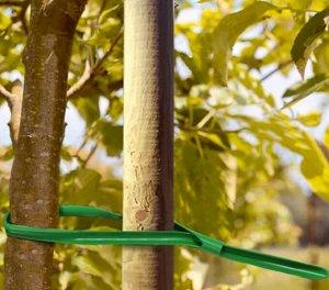 Подвязка для растений 6 шт 62,5 см
