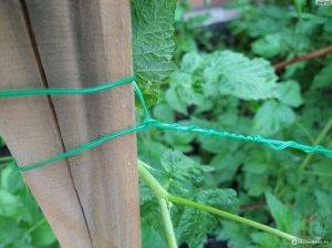 Подвязка садовая 40 метров (без упаковки)