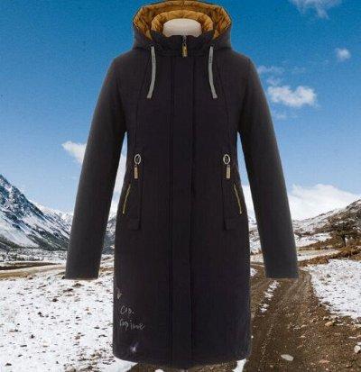 Весна идет! Куртки и ветровки! РАСПРОДАЖА прошлых коллекций — Демисезонное женское — Демисезонные куртки