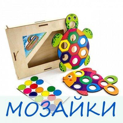 Развивающие деревянные игрушки. В июне повышение цен — Мозаика — Деревянные игрушки