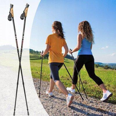 Prime Sport! Здоровый образ жизни—лучшее решение — Скандинавская хотьба