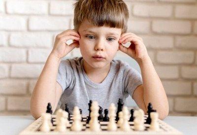 Самые любимые — детские игрушки в наличии! Полное обновление — Шашки, шахматы, нарды — Настольные игры