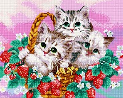 Вышивка для детей и взрослых — Алмазная мозаика (полная выкладка). Алмазная мозаика квадрат