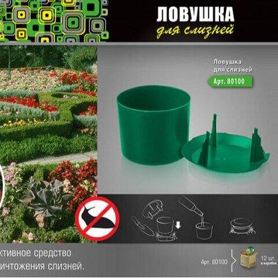 ЧИЩУ СКЛАД: Ликвидация контейнеров возможно последняя  — ДАЧА  — Сад и огород