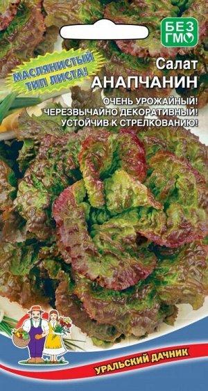Салат Анапчанин (Марс) (среднеспелый,до300гр,полукочанный,сорт ВНИИСОК,красив и на грядке и на столе)