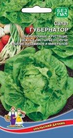 Салат Губернатор (Марс) Новинка! (среднеспелый,до200гр,кочанный,листья светло-зеленые,высокоурожайный,устойчив к растрескиванию)