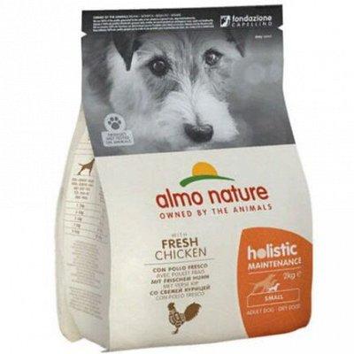 ✔Корма премиум класса д/кошек и собак + Витамины, био-добавки — Almo Nature. Для собак малых и средних пород