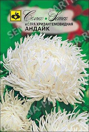 Астра хризантемовидная Андайк 0,5 г