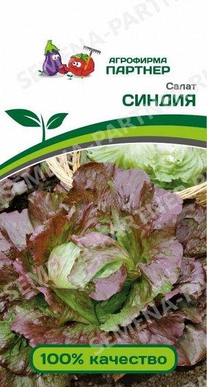 Семенат САЛАТ СИНДИЯ (1Г)