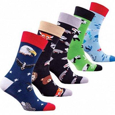 Отличные носки! Упаковки — Детские носки