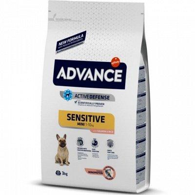 ✔Корма премиум класса д/кошек и собак + Витамины, био-добавки — Advance. Корма для собак с чувствительным пищеварением