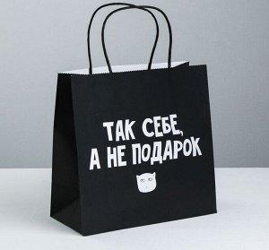 Пакет подарочный «Так себе, а не подарок», 22 × 22 × 11 см