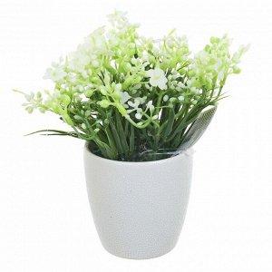 Искусственное растение Белый Вереск (10х11х15 см)