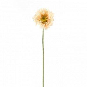 Искусственное растение Lynn (57 см)