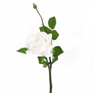 Искусственное растение Anne (40 см)