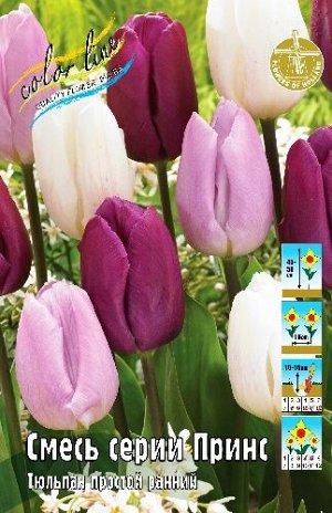 Тюльпан смесь, серии Принс