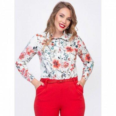 Diolche. Женская одежда от любимого бренда — Модный офис