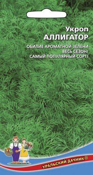 Укроп Аллигатор (Марс) (сильнооблиственный, не стрелкуется, кустовой)