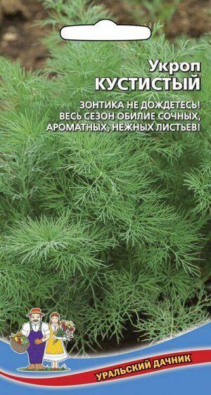 Укроп Кустистый (Марс) (среднеспелый,лист крупный,темно-зеленый,среднерассеченный,сочный,ароматный)