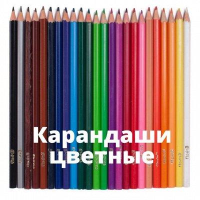 БРАУБЕРГ и ко! Любимая канцелярия! Еще ниже цены — Карандаши цветные