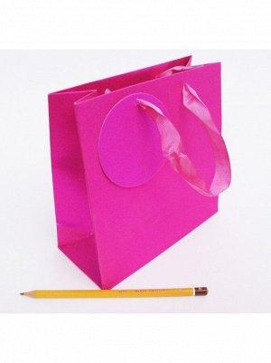 Пакет ламинированный блеск однотонный 18 х 18 х 8 см цвет МИКС HS-24-5