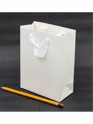 Пакет ламинированный Однотонный 12 х 15,5 х 6 см HS-8-9