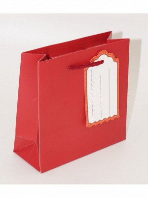 Пакет ламинированный Однотонный 14 х 15 х 6 см