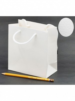 Пакет ламинированный однотонный 15 х 15 х 7 см цвет микс DF-275ХS HS-8-19, HS-54-41