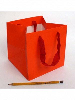 Пакет ламинированный Однотонный 16 х 16 х 15,5см