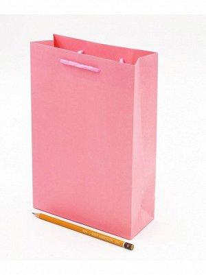 Пакет ламинированный однотонный 17,5 х 25,5 х 7 см цвет микс HS-54-1, 54-36