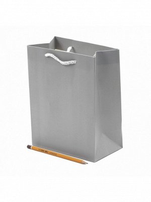 Пакет ламинированный Однотонный 18 х 23 х 10 см цвет микс HS 56-6