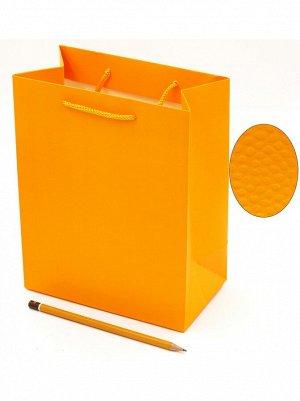 Пакет ламинированный Однотонный 18 х 23 х 10 см цвет микс DF-275S HS 8-20, HS 56-20