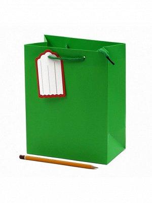 Пакет ламинированный Однотонный 18 х 23 х10 см цвет МИКС HS-56-10, 56-15