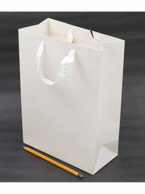 Пакет ламинированный Однотонный 20 х 28 х 10 см HS-8-11
