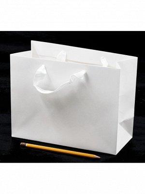Пакет ламинированный Однотонный 23 х 18 х 10 см цвет белый HS-8-5