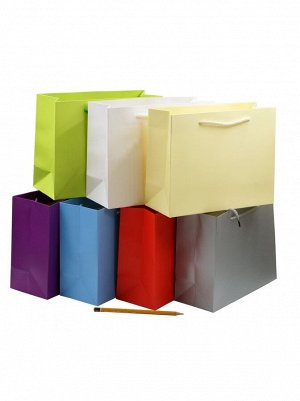 Пакет ламинированный однотонный 24,5 х 19,5 х 9,5 см цвет микс HS-54-42