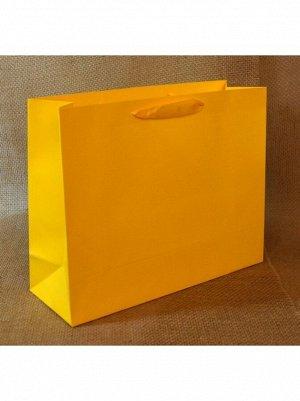 Пакет ламинированный Однотонный 25 х 32 х 11 см