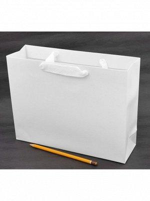 Пакет ламинированный Однотонный 27 х 21 х 8 см цвет белый HS-8-6