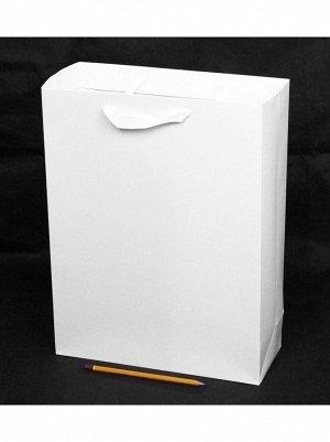Пакет ламинированный Однотонный 30 х 40 х 12 см цвет МИКС HS 8-13