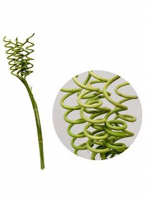 ветка Curly rattan 6шт*70см цв.Зеленый