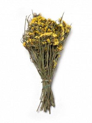 Лимониум сухоцветы 17 х 11 х 33 см 125 гр