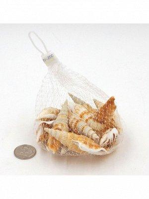 Ракушка морская длинная Ocean shell 100 гр HS-13-5