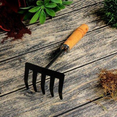 Готовимся к дачному сезону - все для сада и огорода — Малый садовый инструмент